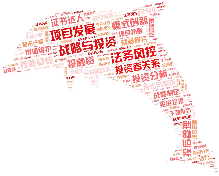 词云图,文字云图,战略与投资 项目发展 法务风控 投资者关系 模式创新 投后管理 投资分析 投融资 证书达人 技能复核
